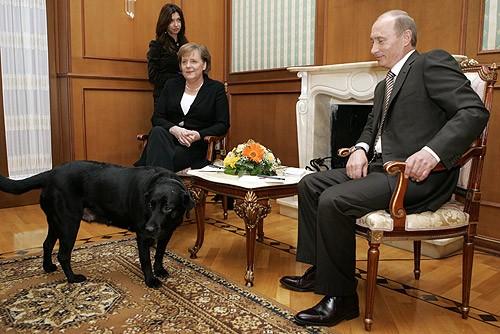На фото изображены Меркель, Владимир Путин и его лабрадор Конни.