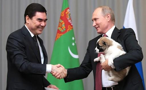 На фото изображен Владимир Путин и алабай.